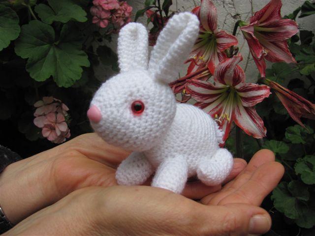 Conejo Amigurumi Patron Gratis : Amigurumis amorosos el conejo alejo conejo blanco amigurumi
