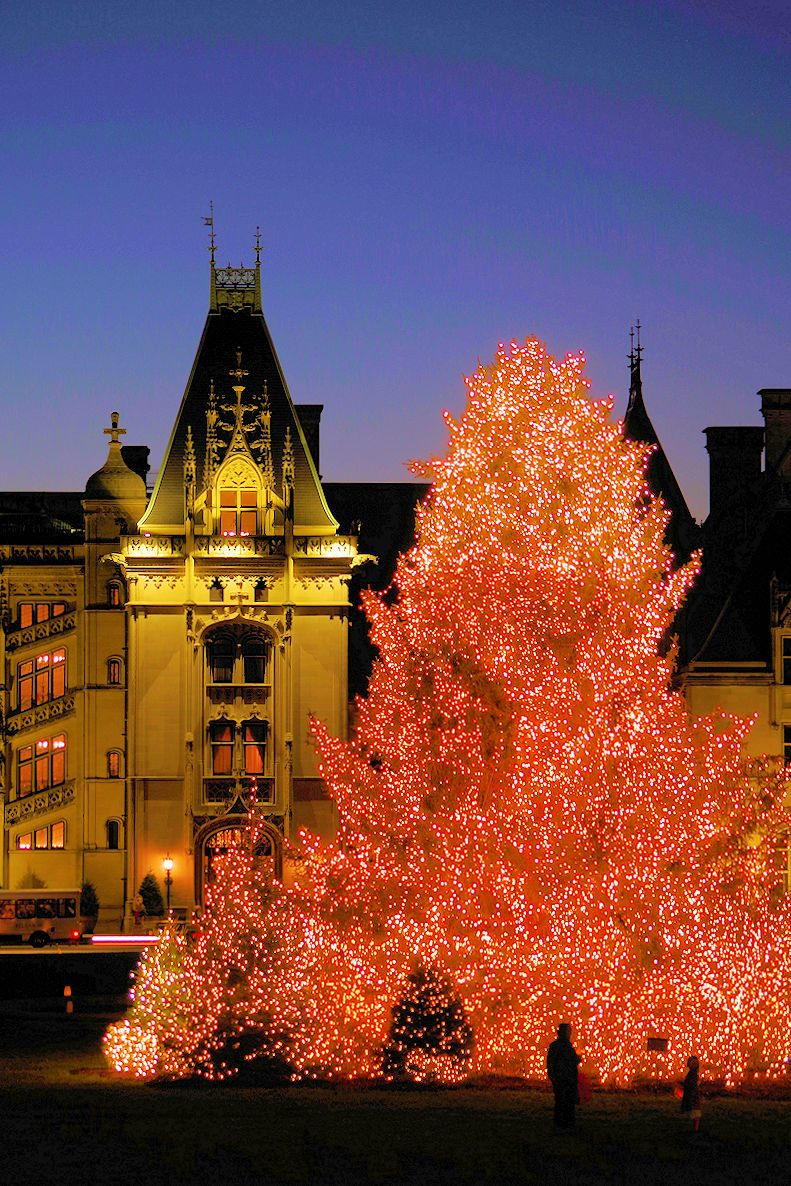 Biltmore House Candlelight With The Giant Christmas Tree 2015 In Asheville Nc Biltmore Christmas Biltmore Estate Christmas Biltmore House