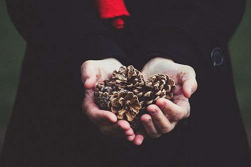 nOvember gifts | by Gabriela Tulian, on Flickr.