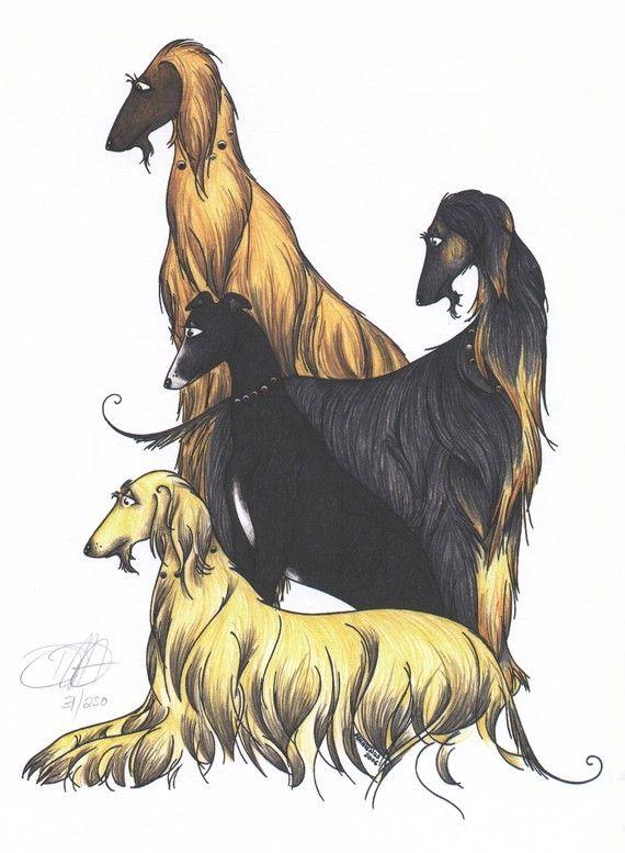 Pin by Bonnie Simmons on Afghan Hound Art | Afghan hound ...