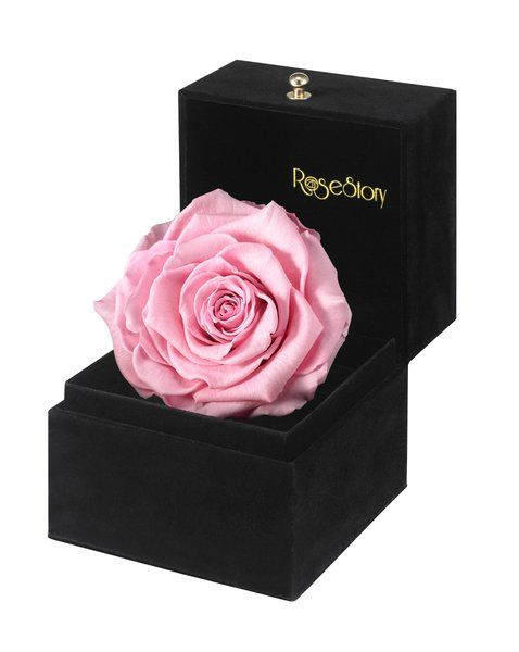 Innocent love infinite rose gift box feminine pink wedding rose negle Choice Image