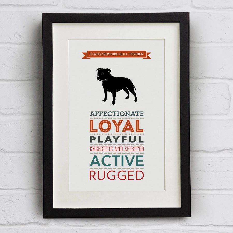 Staffordshire Bull Terrier Breed Traits Print