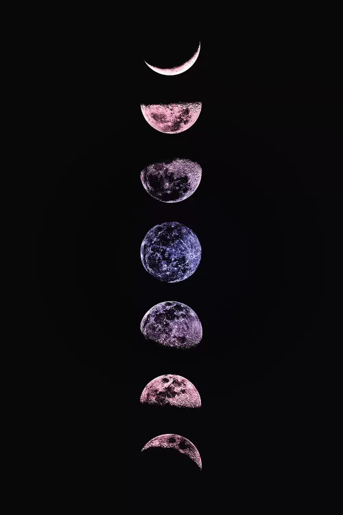 Moon Phases - Canvas Print