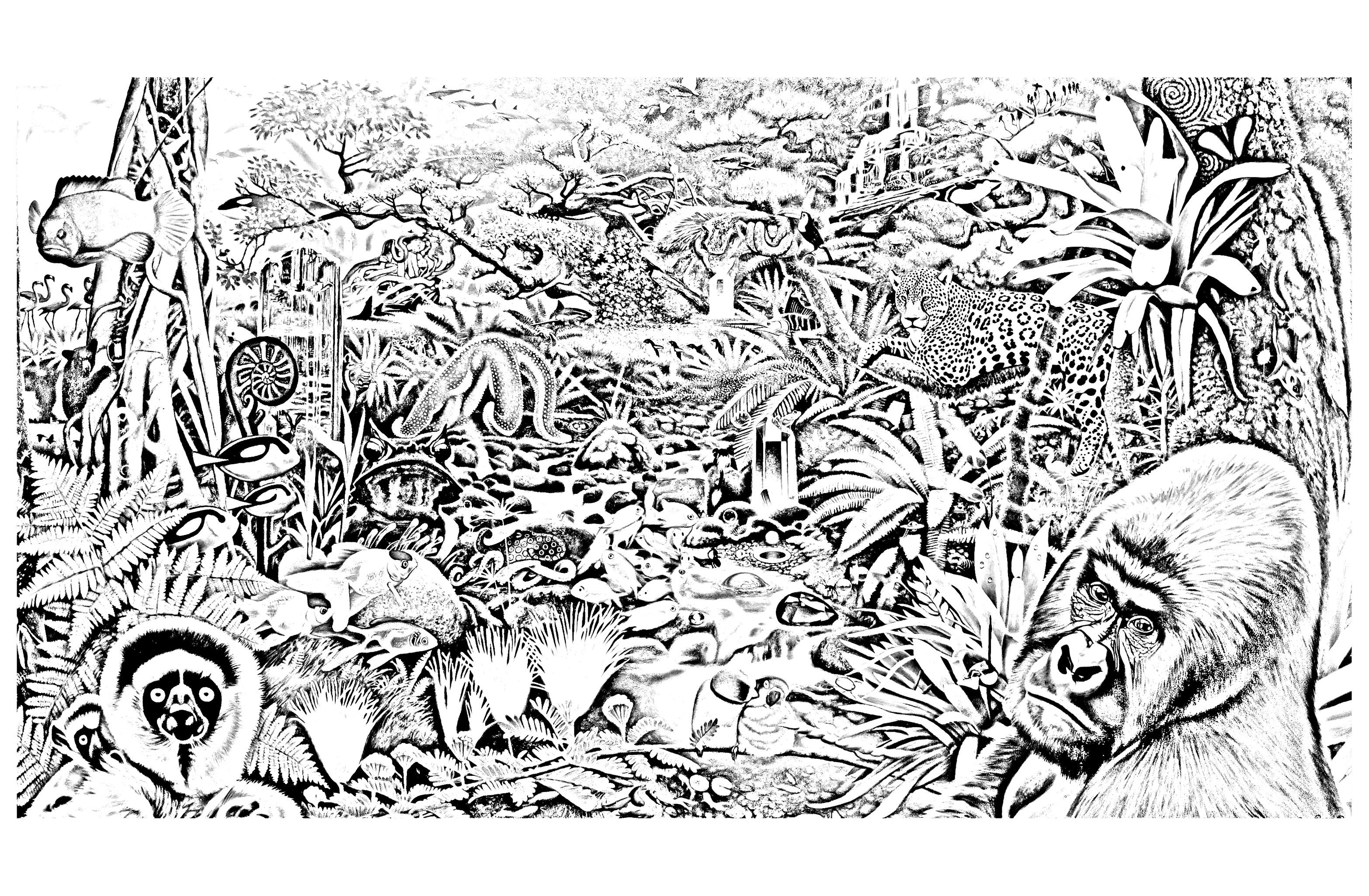 Free Coloring Page Coloring Jungle Forest Animals Various Animals In A Forest To Print An Animal Coloring Pages Jungle Coloring Pages Forest Coloring Pages