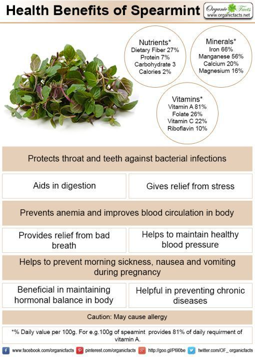 Some of the most important health benefits of spearmint and