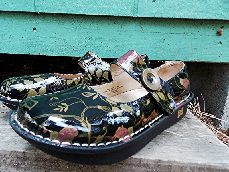 Alegria by PG Lite Size 40 Leather Floral Paloma Euro 40 Mary Jane Shoes  #Alegria #Walking