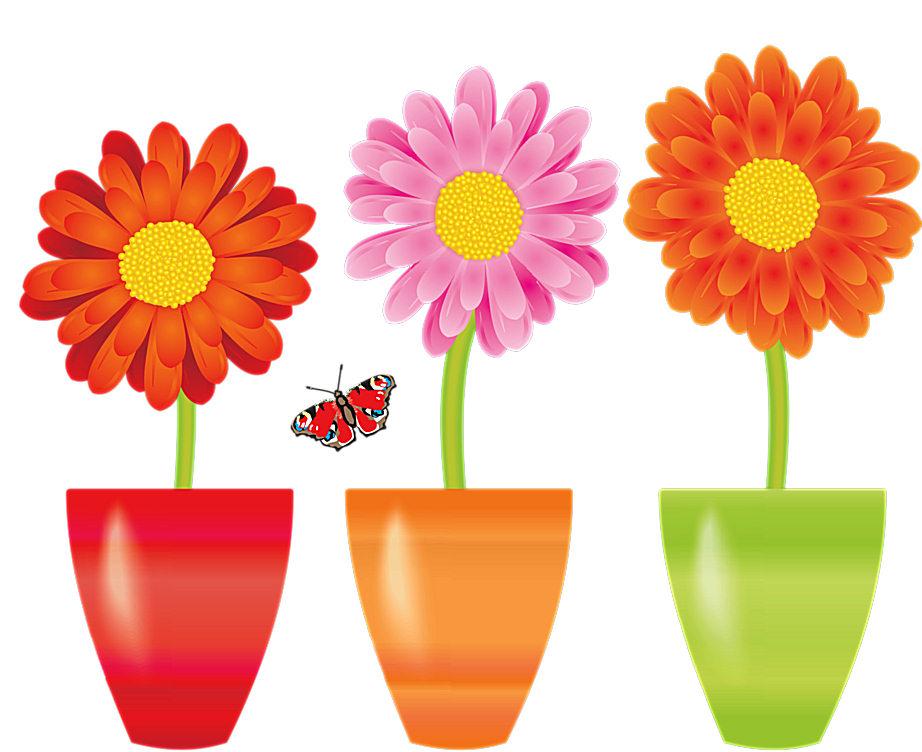 Macetas Con Flores Macetas Con Plantas Plantas En Maceta Macetas Clipart