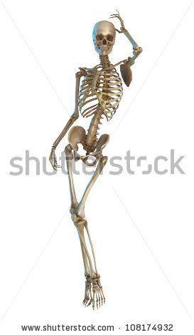 artistic skeleton poses - Google Search | anatomy | Skeleton