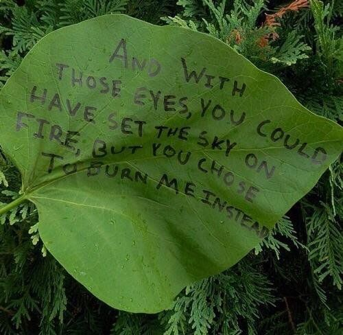 quotes green and leaves image green aesthetic slytherin