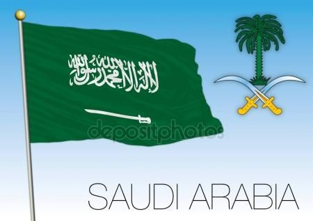 Saudi Arabia flag with coat of arms — Vettoriale Stock #156325910