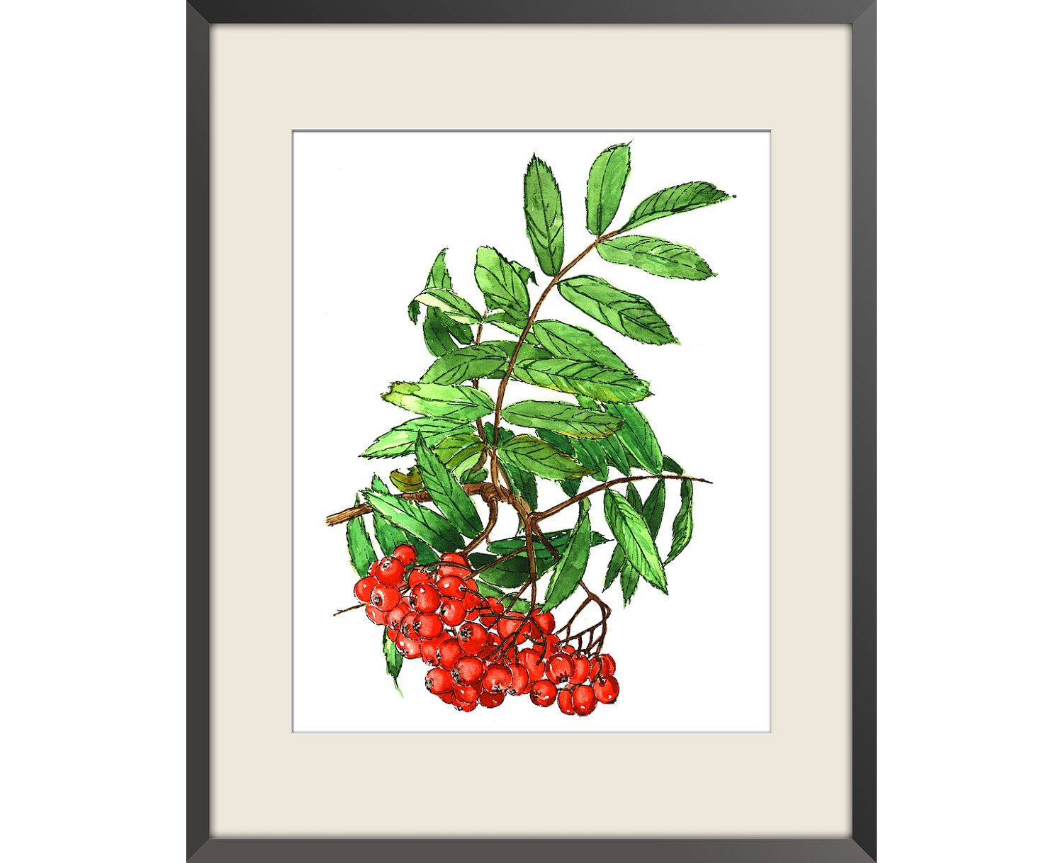 """Rowan - Watercolor print of my original paint, signed and dated Paper size: 8""""x10"""" (20,32x25,4cm). $16.00, via Etsy."""