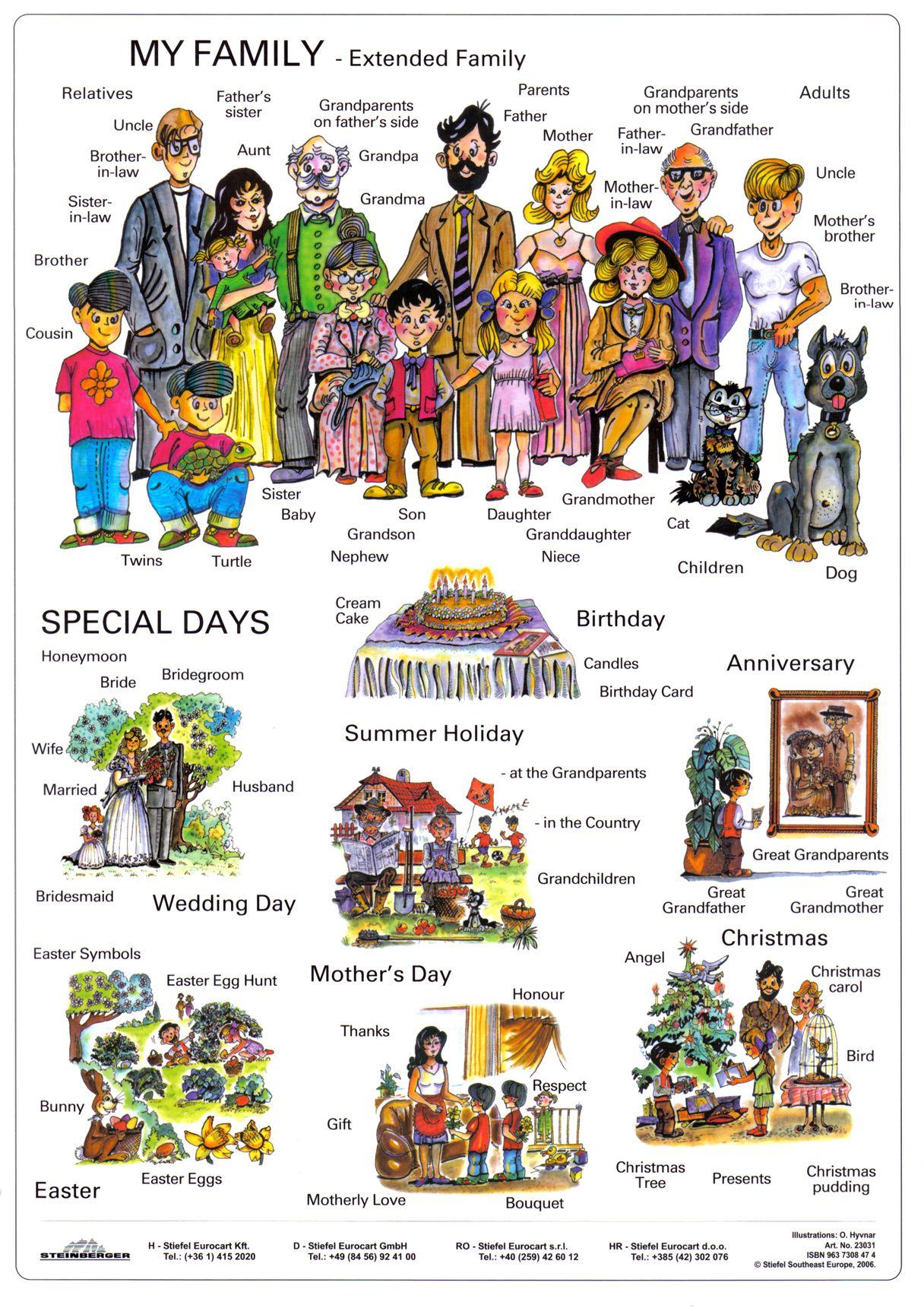 Vocabulario De La Familia Y Dias Especiales