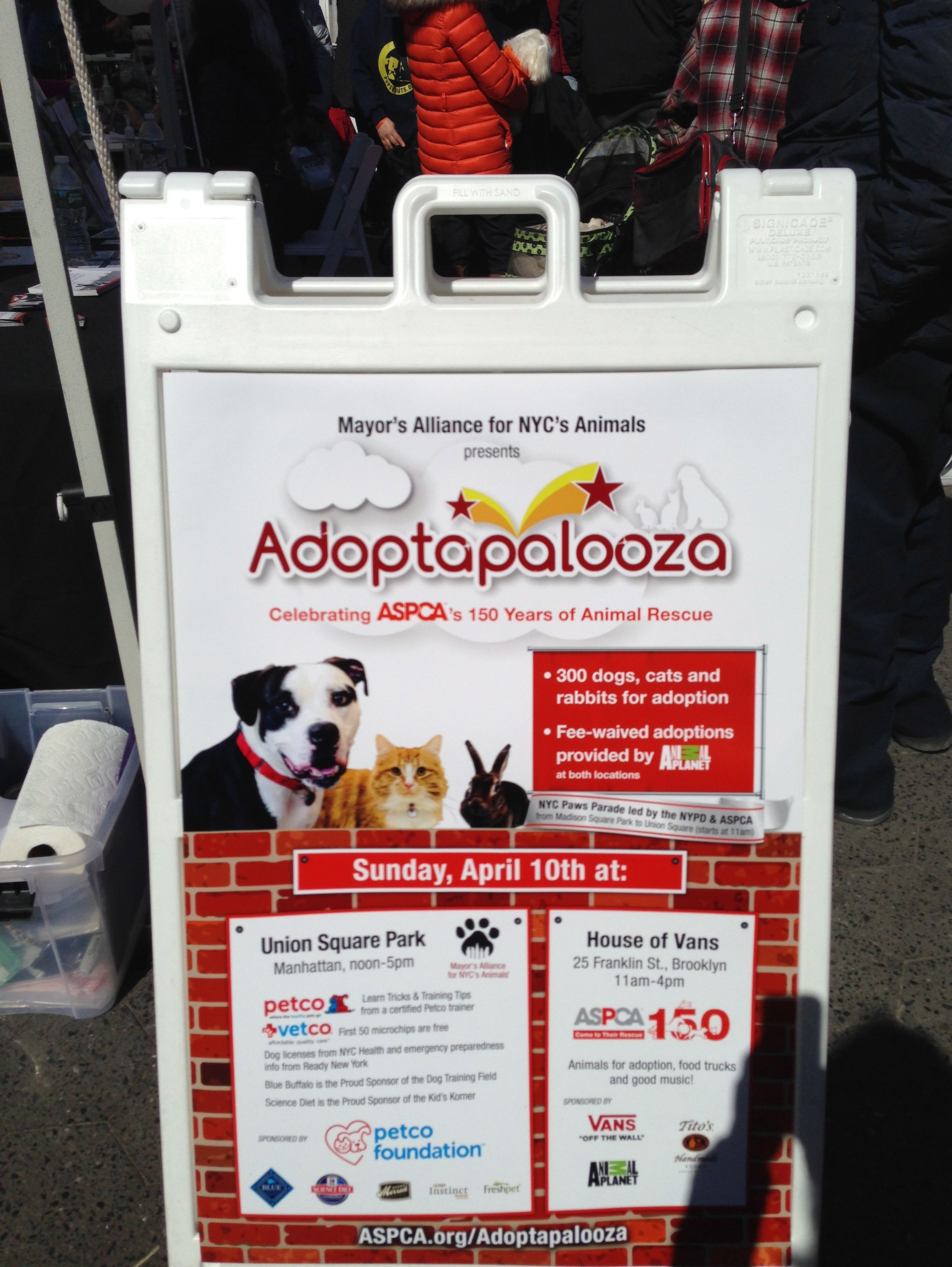 A successful event on Sunday. Make adoption your first