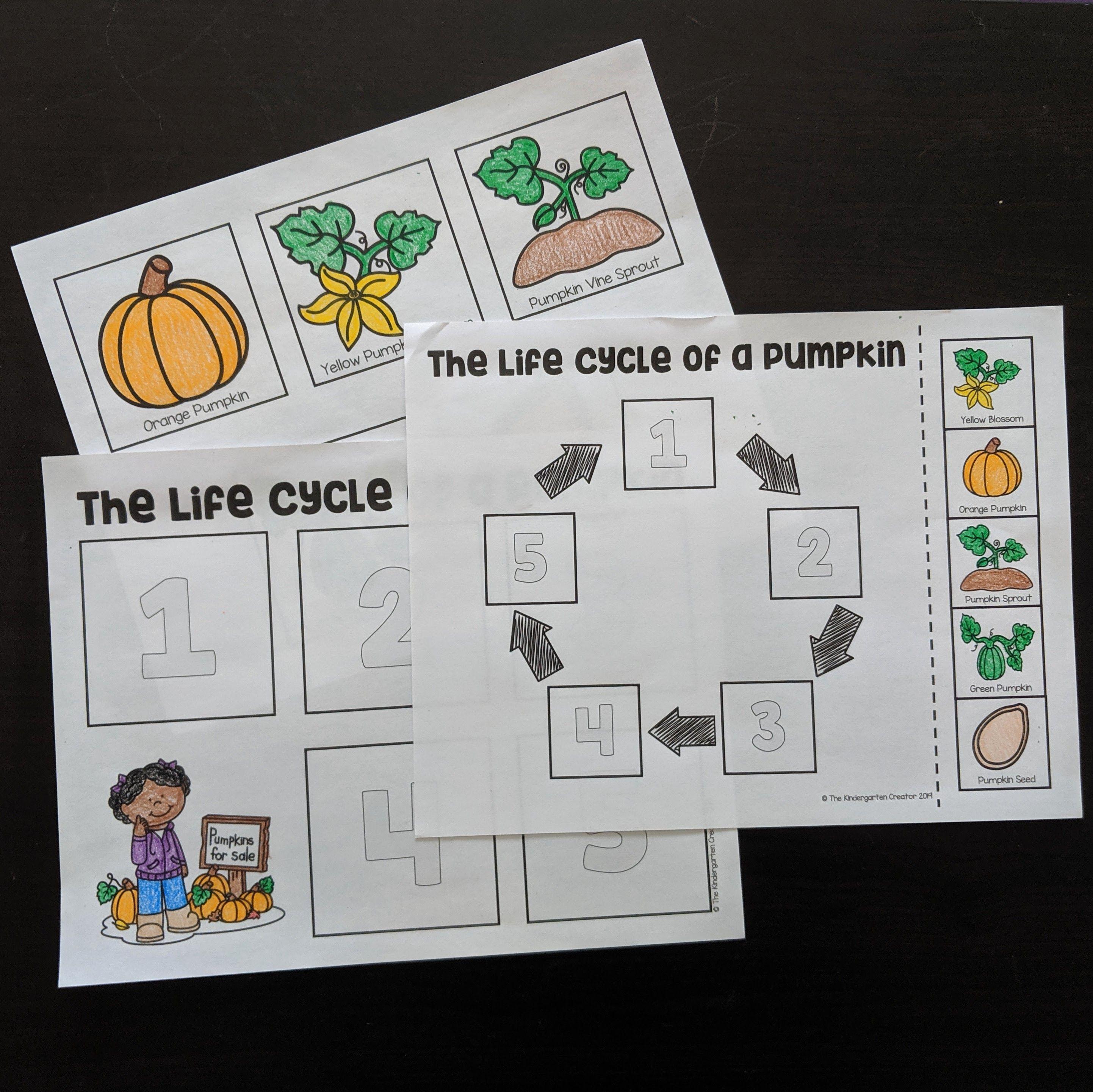 Life Cycle Of A Pumpkin Printables Life Cycles Cycle Kindergarten Activities [ 2883 x 2884 Pixel ]
