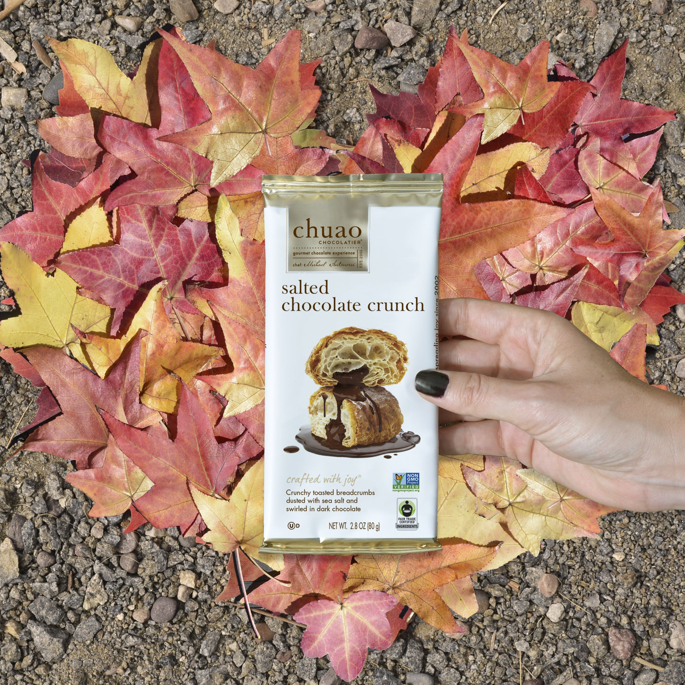 crunchy leaves, crunchy treats 🍁🍫 crunchy, toasted breadcrumbs dusted with sea salt and swirled in dark chocolate.