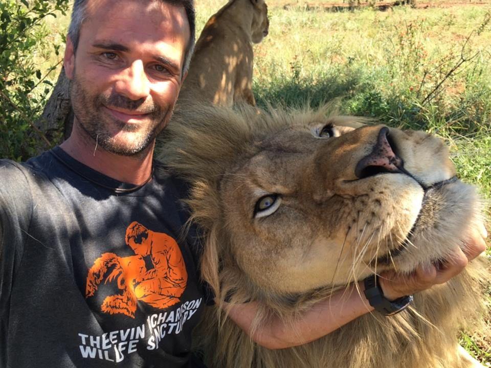 Image result for lion human friendship