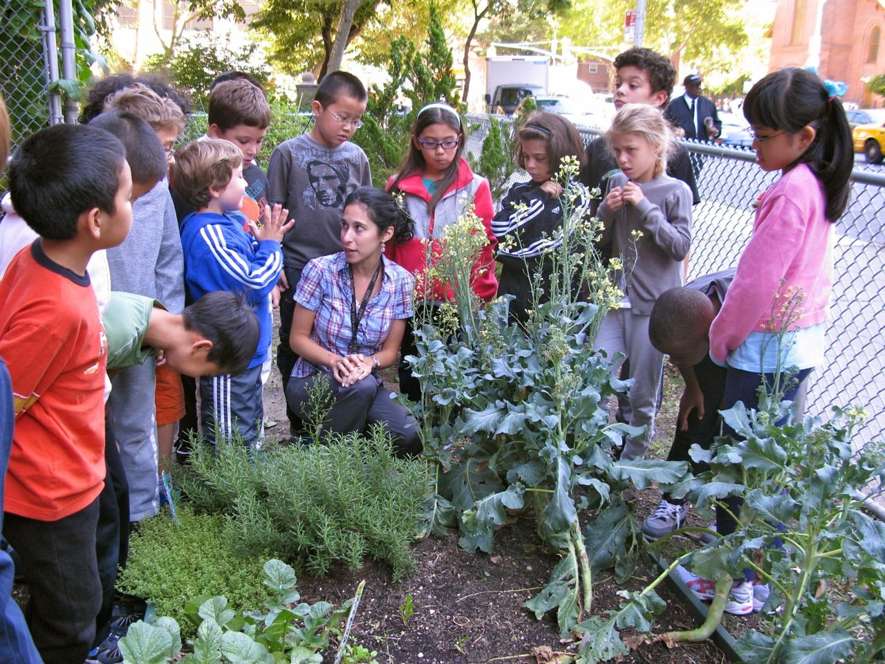 Starting a school garden. // Such a fun and cute way to