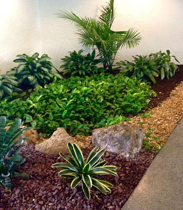 Ideas para crear un jard n para la sombra gardens for Tipos de plantas para decorar interiores