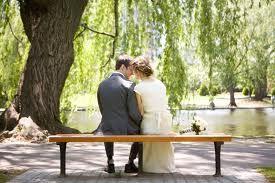 Photo Ideas  public garden, bench, willow