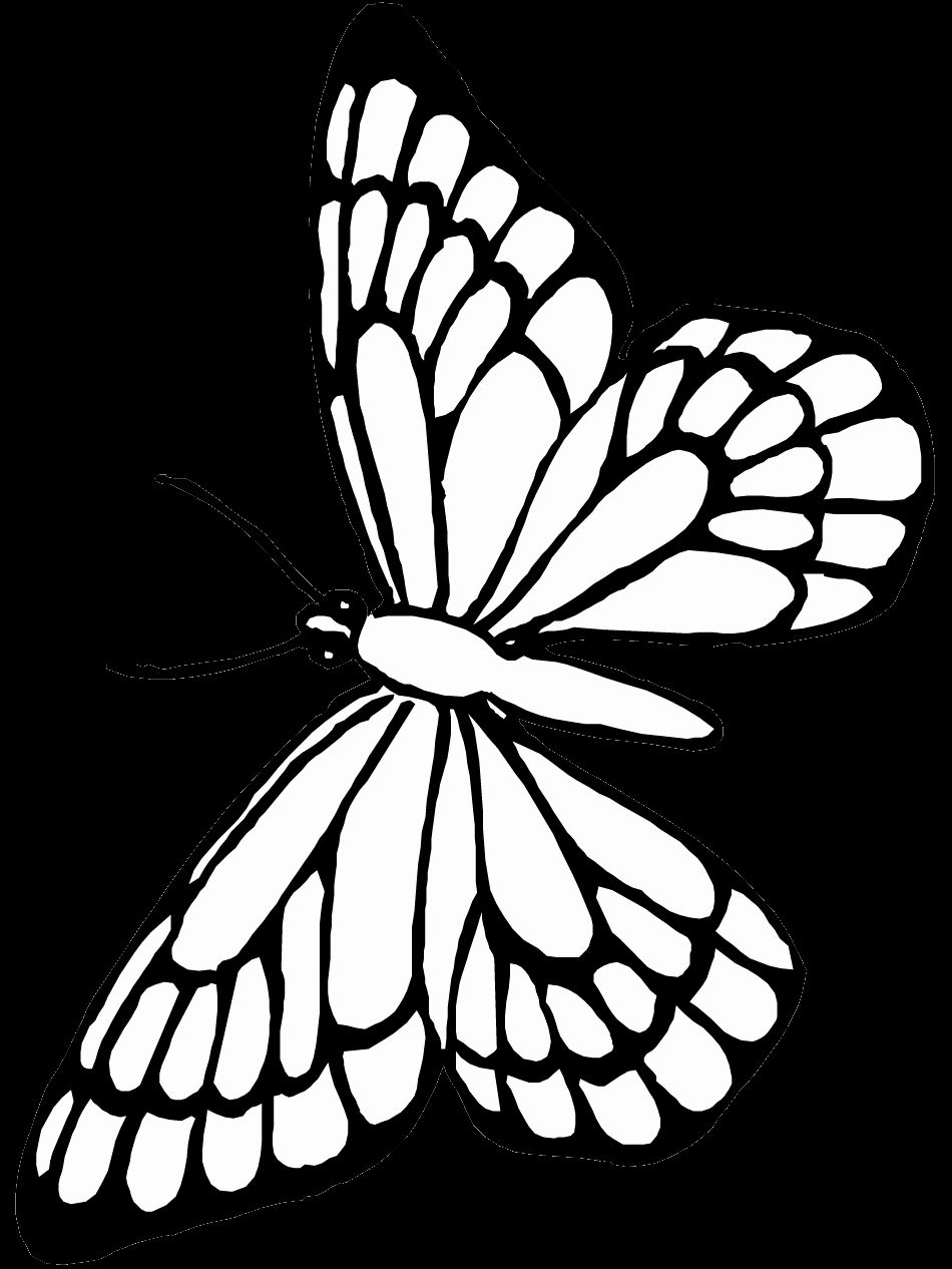 Monarch Butterfly Coloring Page Luxury Butterfly Coloring Pages Southwestdanceacademy Com Butterfly Coloring Page Free Coloring Pages Horse Coloring Pages [ 1266 x 950 Pixel ]