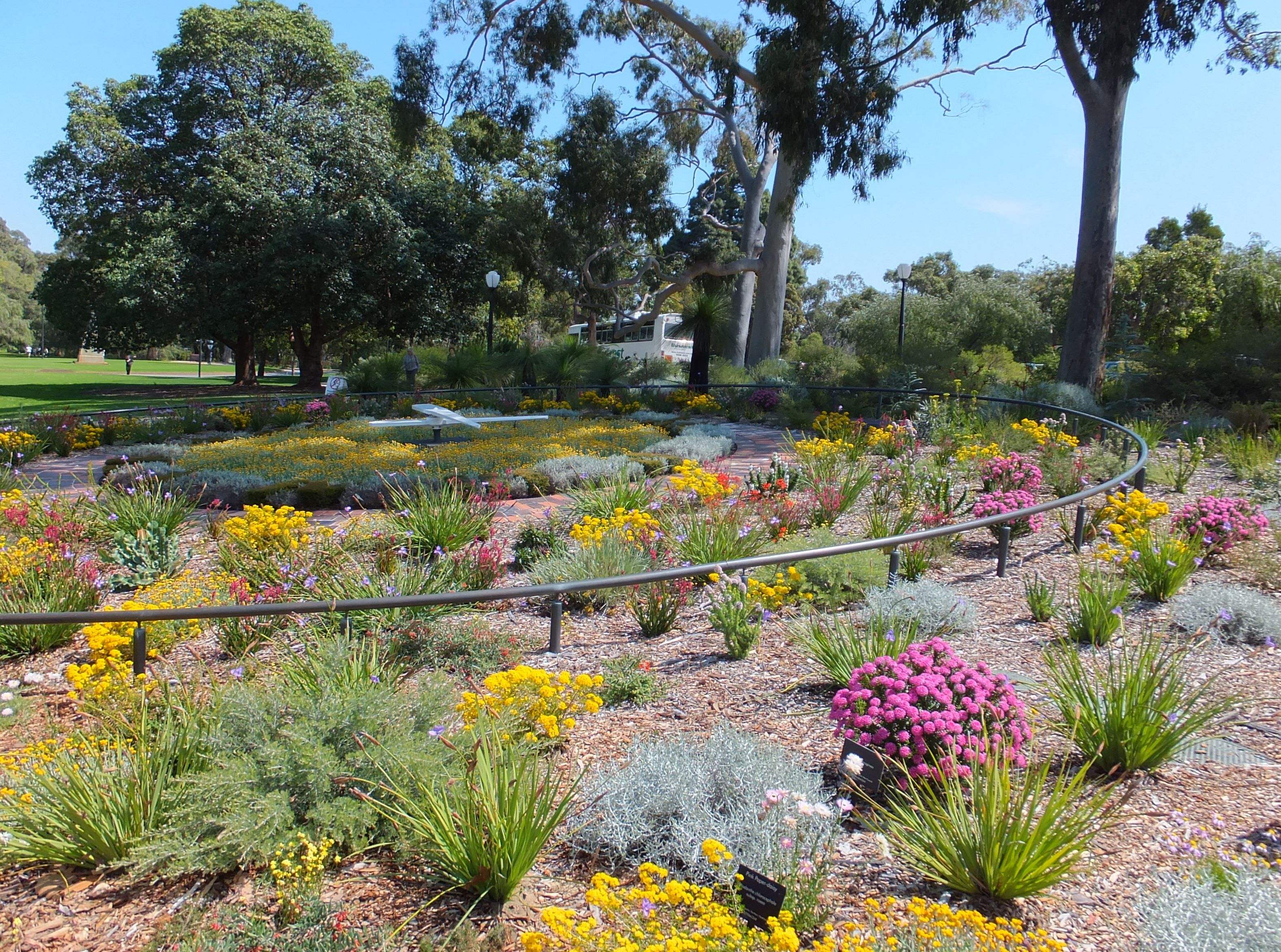 Kings Park and Botanic Garden | Botanical gardens, Garden ...
