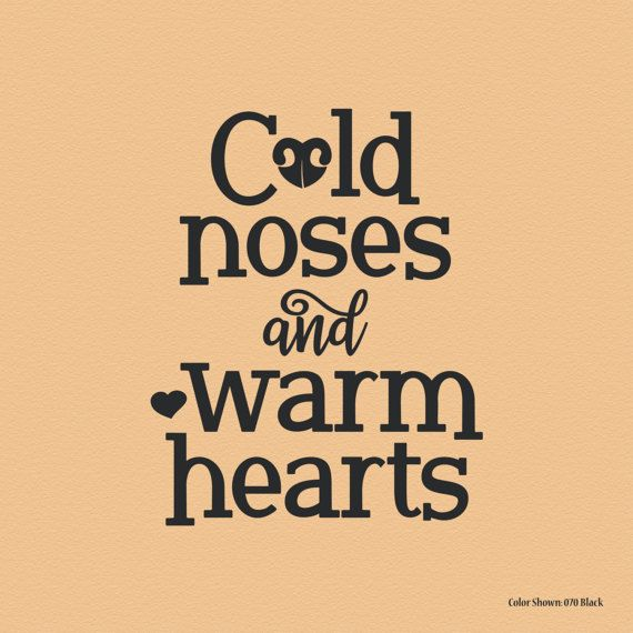 Cold noses and Warm Hearts, pet wall art, wall quote decal, vinyl ...
