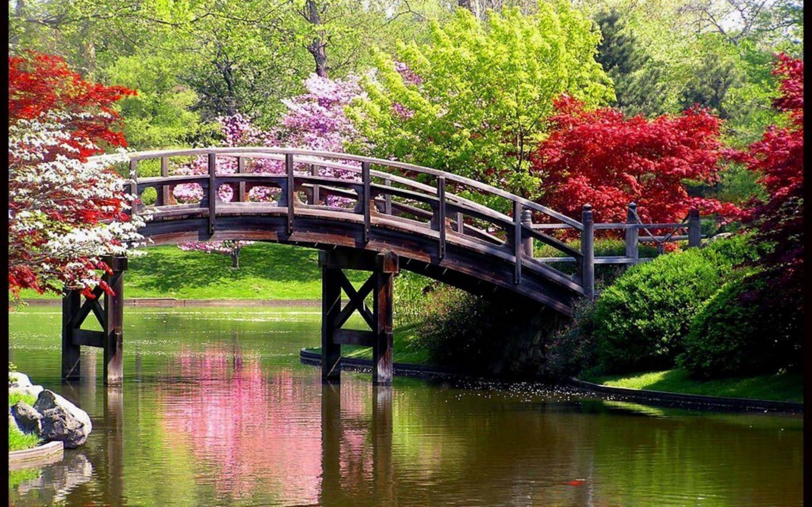 World Beauty Beautiful Nature Wallpapers Of Spring Time