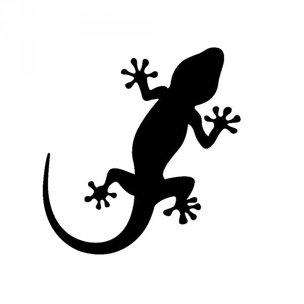 Dessin Salamandre stickers salamandre geckos - sovalux stickers …   cricut   stick…