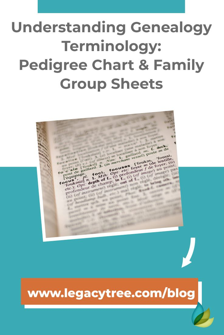 Understanding Genealogy Terminology Pedigree Chart Family Group Sheets Pedigree Chart Genealogy Education Family History