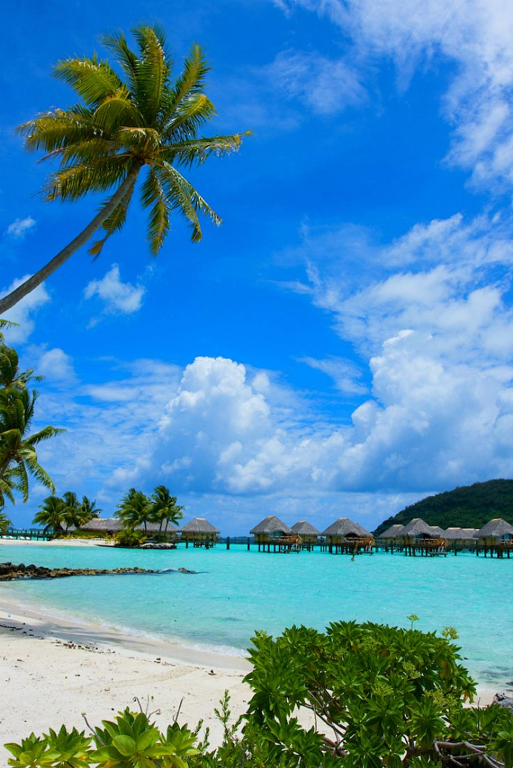 Have A Wonderful Day With Greetings From Bora Bora French Polynesia
