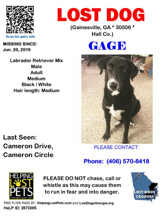 Corrected Location Gainesville GA LOSTDOG Gage