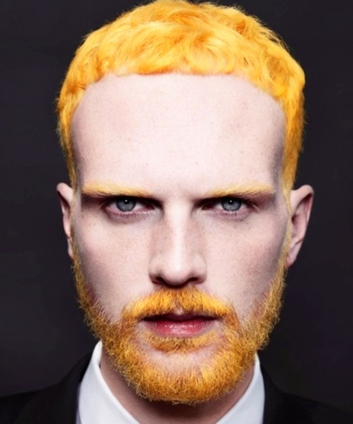 yellow hair and bread dude alternative