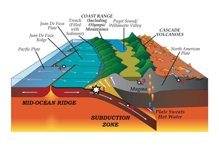 My Courses Subduction Zone Subduction Cascadia