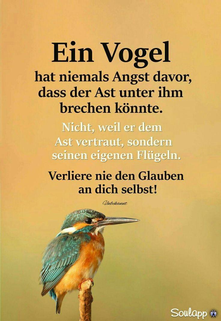 Spruch :  Ein Vogel  ... verliere ...