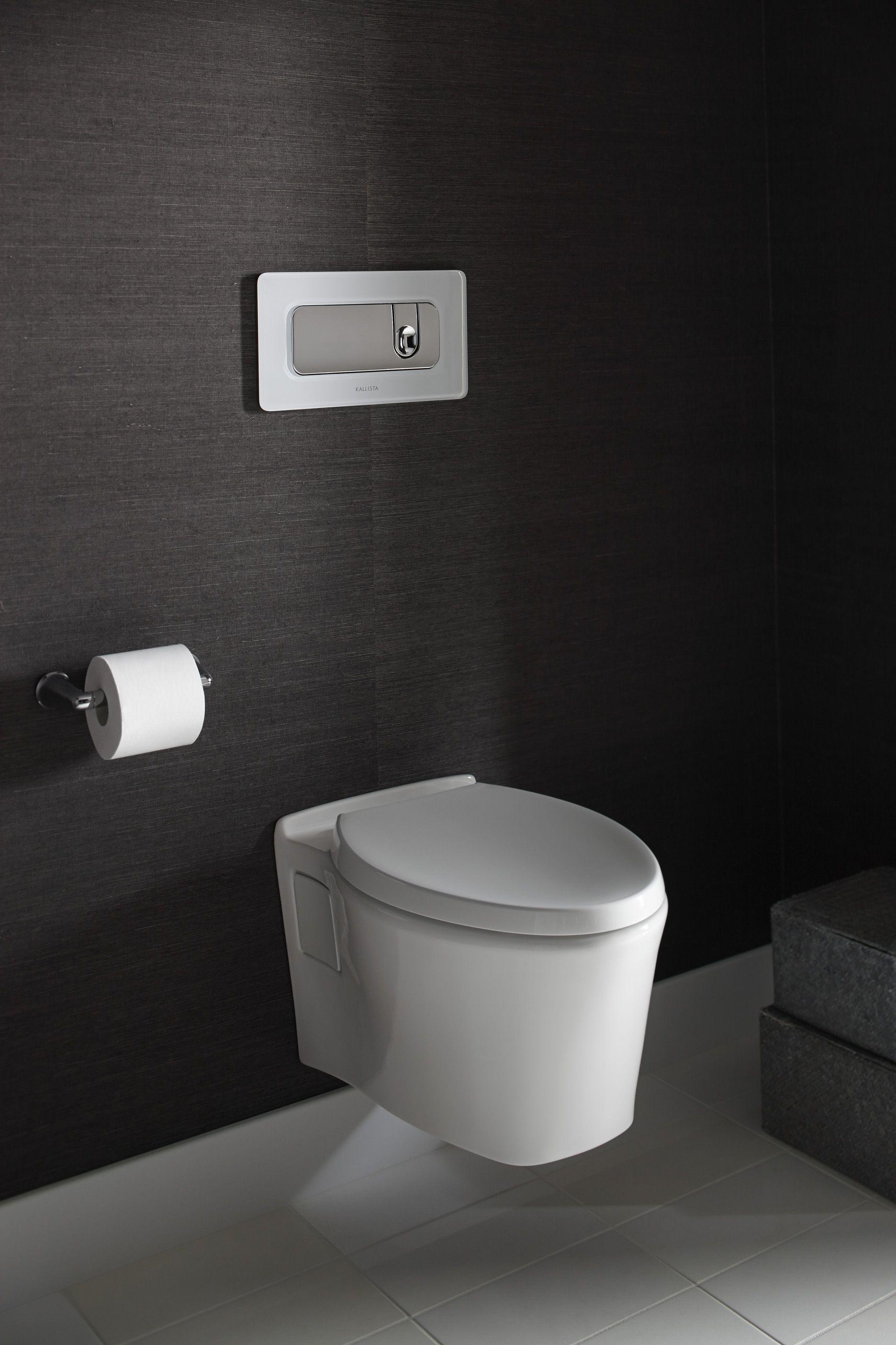 Pleo Wall Mount Toilet By Kallista Sleek And Seamless Bowl