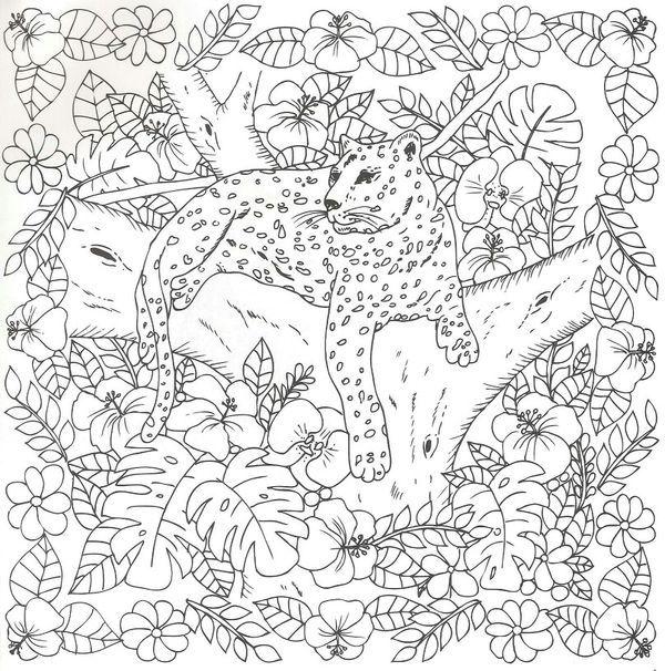 Cheetah Colouring Page Coloring Pages Batman Coloring Pages Animal Coloring Pages