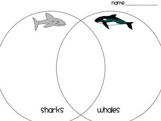 Shark is a fish with the tail fin going up and down while