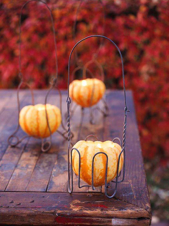 Gorgeous calabazas y calabazas de otoño Decoración