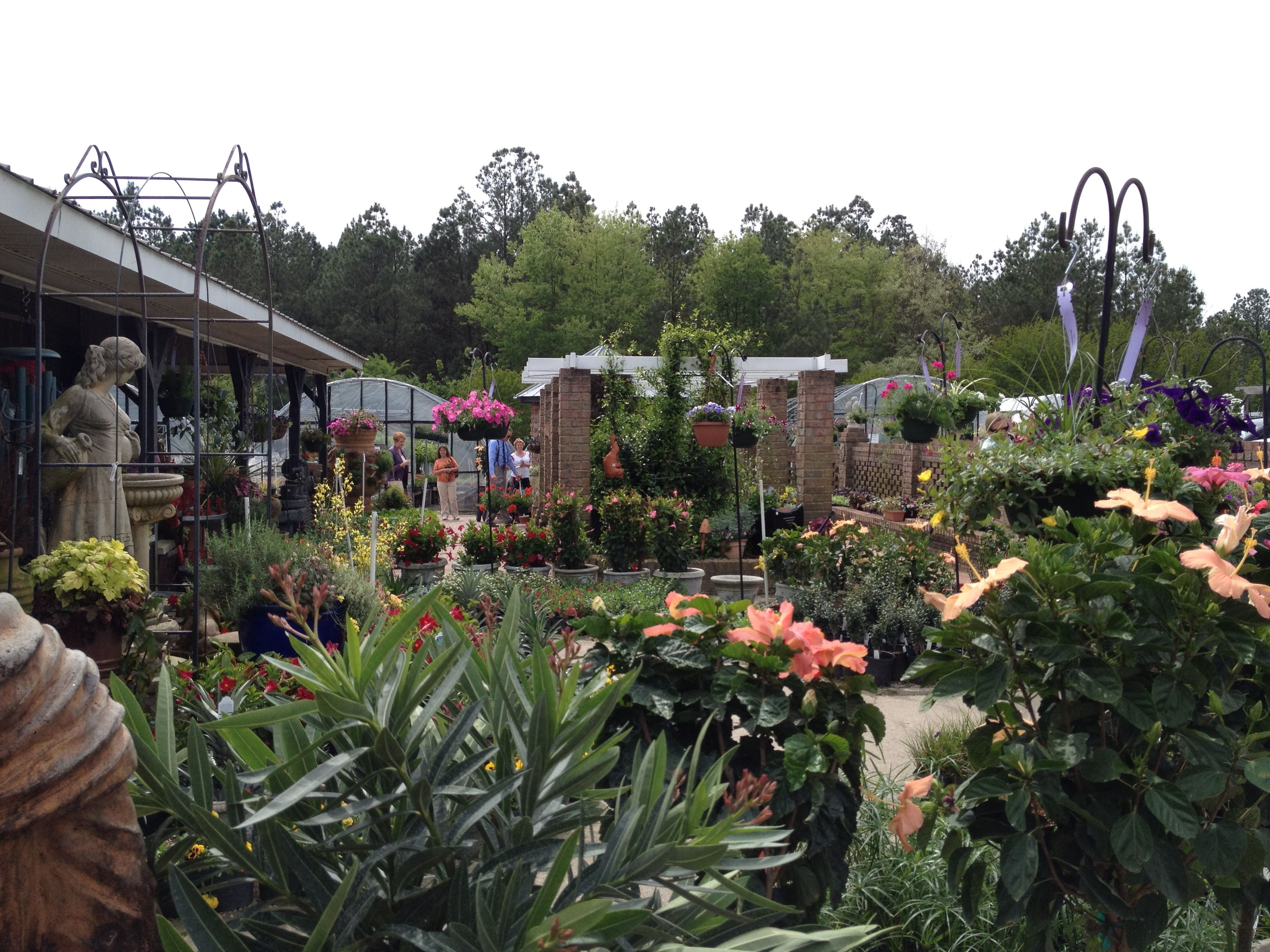 Big Bloomers Flower Farm. Fantastic place with so much to choose from!