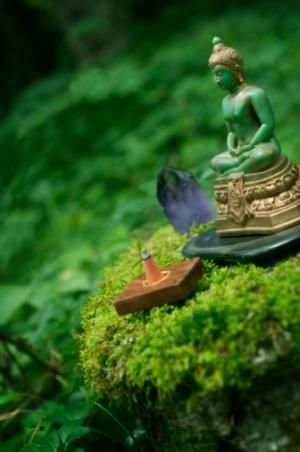 How To Create an Altar in Your Home: A good feng shui garden altar can be as simple as a small Buddha statue, a crystal and an incense cone. Surrounded by lush greenery and serene nature's energy, this altar feels very healing.