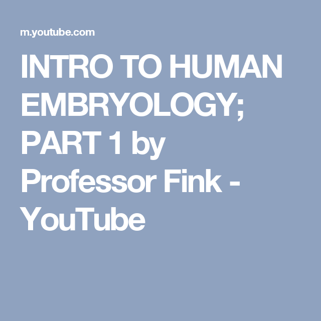 INTRO TO HUMAN EMBRYOLOGY; PART 1 by Professor Fink - YouTube