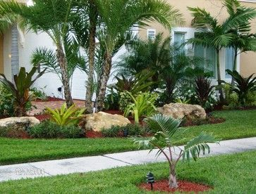 Tropical Decorating Ideas Tropical Landscape Design Ideas Pictures Remodel An Small Front Yard Landscaping Landscaping Around Trees Palm Trees Landscaping