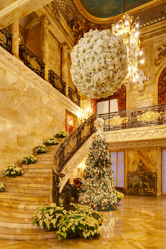 Breathtaking...Christmas tree in Newport, Rhode Island - The Marble House  With White Poinsettia Kissing Ball