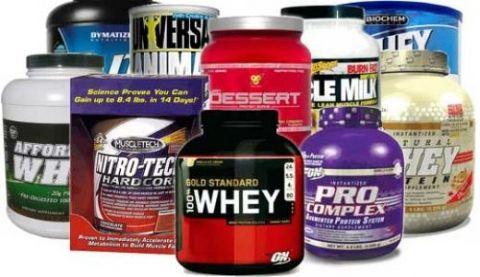 The 10 Best Protein Powders, Reviewed and Graded
