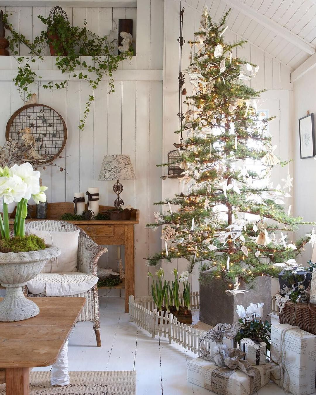 We Love The Look Of A Spindly Tree In This Earthy Space Tap The