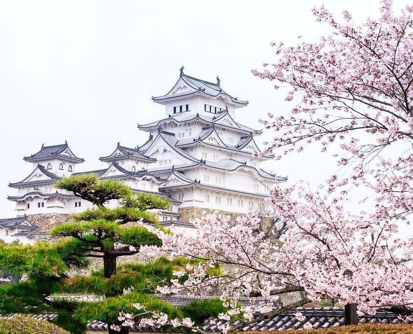 Must Visit Travel Destinations On Instagram Himeji Castle Japan It S A Spectacular Japanese Castle Locate Japanese Castle Himeji Castle Travel Destinations
