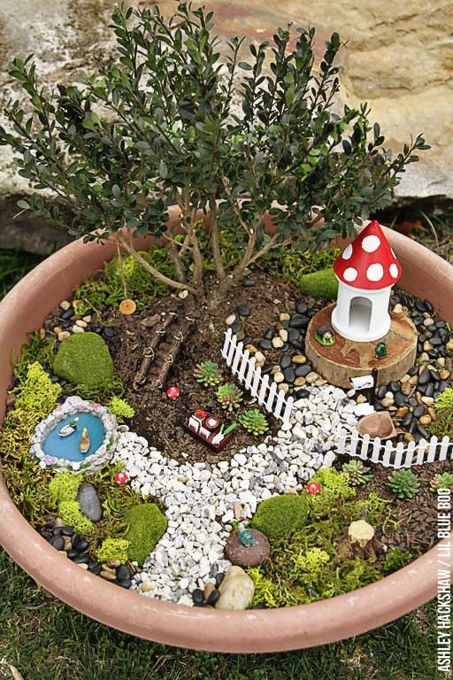 Fairy Garden Ideas   How To Make A Bonsai Tree Fairy Garden   How To Make A DIY  Fairy Garden For Small Spaces Using A Container, Garland Lights And Moss.