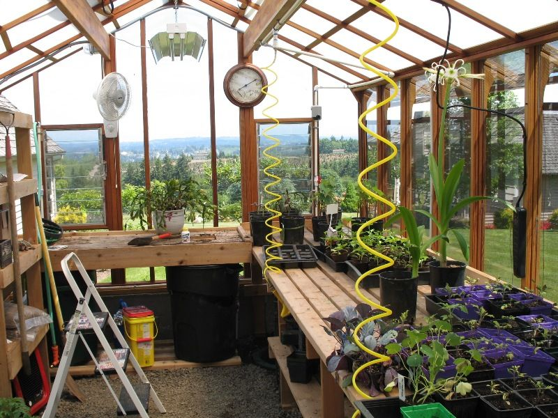 Exceptionnel The Interior Of The Previous Greenhouse. Glad To Have Glass Walls With A  View Like