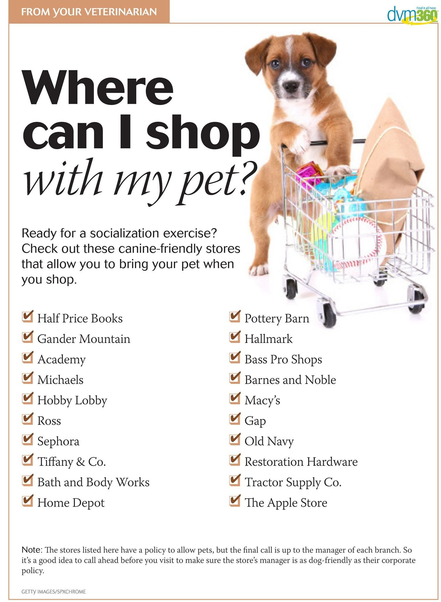 Handout Safe Places To Socialize Puppies Puppy Socialization