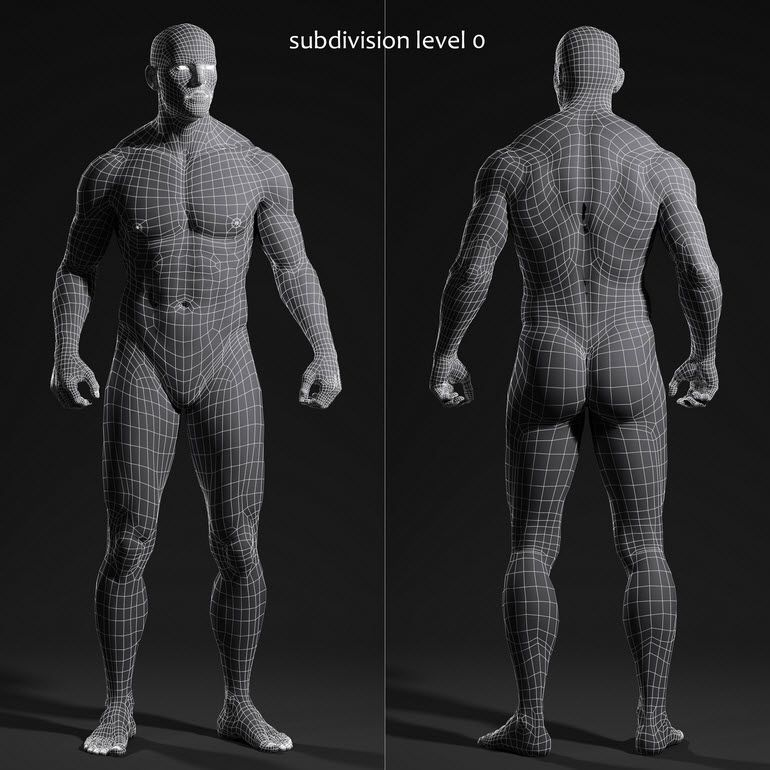 male body for animation   reference for 3d work   Pinterest ...